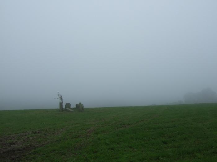 03.08.2007 Mist
